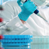 Kit di test di malattie veneree / dell'Ureaplasma parvum / dell'Ureaplasma urealyticum / per DNA