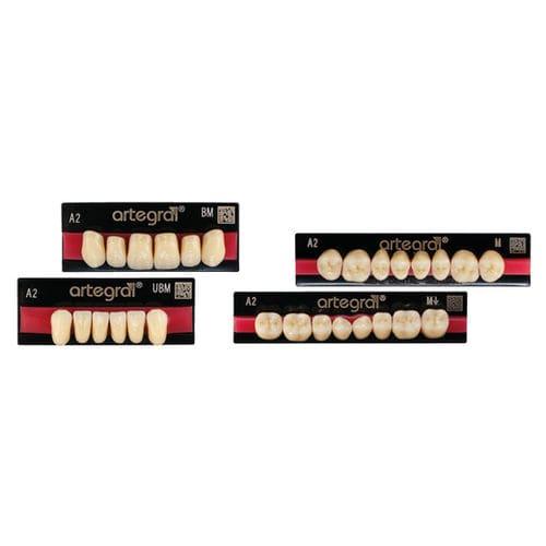 protesi dentale in PMMA / per denti anteriori / per denti posteriori