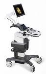 ecografo su piattaforma compatto / per ecografia ginecologica ed ostetrica / per ecografia urologica / bianco e nero