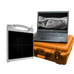 rilevatore a pannello piatto per radiografia veterinaria / portatile