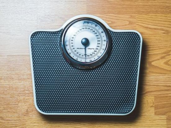 Guarnizione del grasso