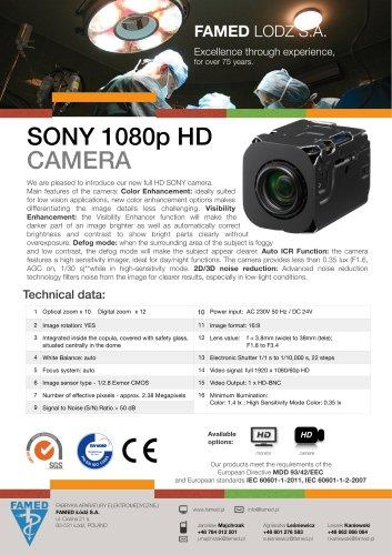 SONY 1080p HD