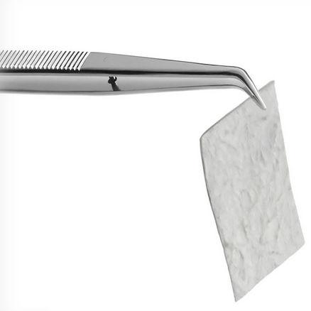 matrice per chirurgia orale / xenotrapianto