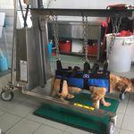 carrello veterinario / multifunzione / di emergenza / per medicazione