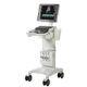 ecografo su piattaforma / per ecografia cardiovascolare / per echografia in medicina d'emergenza