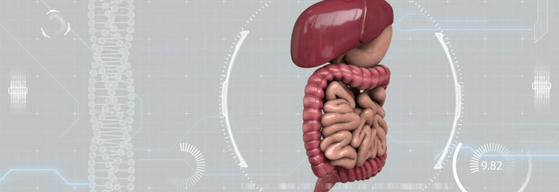 Nel futuro della gastroenterologia con test di digeribilità e microbiologia