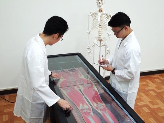 La tavola virtuale di dissezione di Bio--tocco (cortesia di LA MAGGIOR PARTE)
