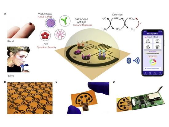 SARS-CoV-2 RapidPlex: una piattaforma di telemedicina multipla a base di grafene per la diagnosi e il monitoraggio rapido e a basso costo di COVID-19