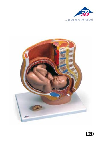 Manuale di prodotto - Bacino gravido - L20