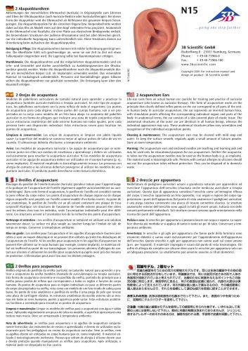 N15 Oreccie per agopuntura