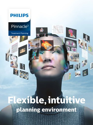 Flexible, intuitive planning environment